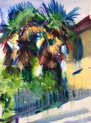 Palm Trees on a Sunny Day. 41x31cm. Florence, Italy