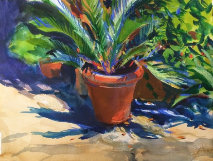 Ficus Palm. 31x41cm. Florence, Italy