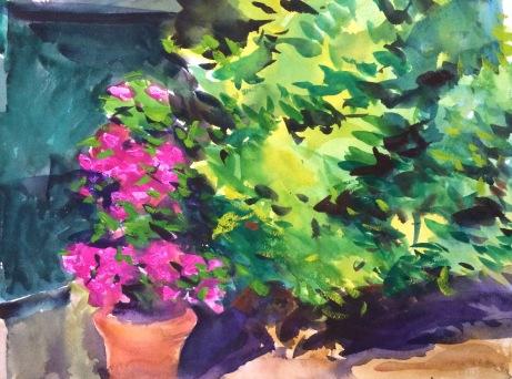 Garden in Summer Sun ~ 31x41cm. Florence, Italy