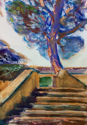 Tree in the Boboli Gardens. 51x36cm. Florence, Italy